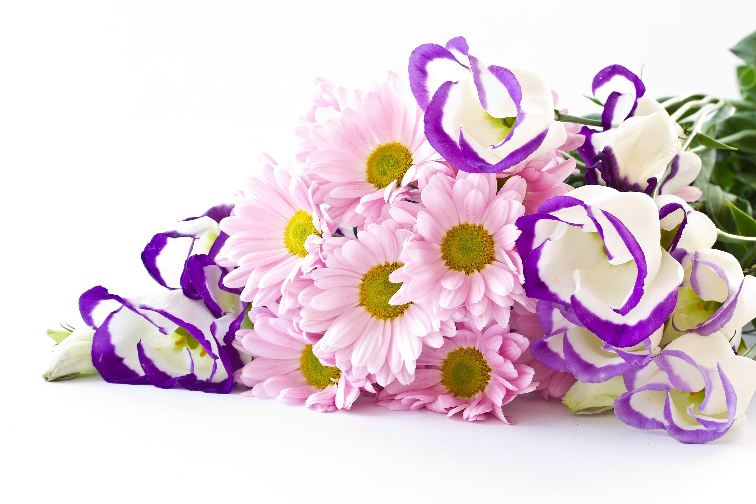How to Find a Florist with Efficient Flower Delivery Service