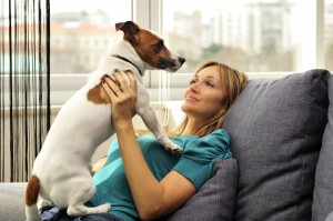 Find Great Pet Care Services In Grayslake IL