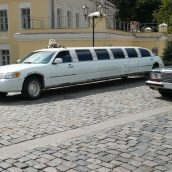 Limo Service: Making Your Event Stand Out