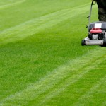 Hiring Some Professional Lawn Mowers for Your Property