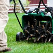 Lawn Care in Fayetteville, GA in the Spring Time