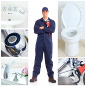 Why Seek Professional Toilet Plumbing Service?
