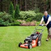 What to Look for in Professional Landscape Companies in Scotts Valley