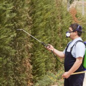 Finding The Right Lawn Care Service In Jupiter