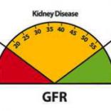 Symptoms of Chronic Kidney Failure