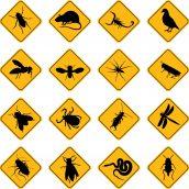 Pest Management Program For Healthcare