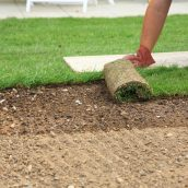 Professional Lawn Care in Durham, CT to Prevent or Eliminate Fungal Infections