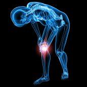 Stem Cell For Knees Assessments