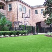 Dogs on the Lawn? Consider Artificial Turf Lawn Miami FL