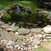 Aquascapes Waukesha WICheck Out Aquascapes in Waukesha WI for a Beautiful Backyard
