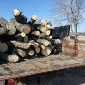 What Can a Firewood Service in Wamego, KS Do for You?