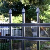 Some Good Reasons to Choose an Iron Fence in Temecula Over the Other Options