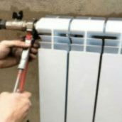Pests And Furnace Repair In Puyallup Wa