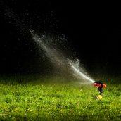 Why You Might Need Sprinkler Repair in Spokane