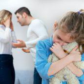 Decades of Negotiation and Litigation in Child Custody Litigation