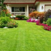 Keeping Your Landscaping Looking Great