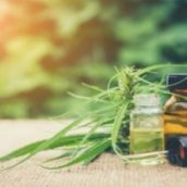 Reasons for the Increasingly Common Use of CBD Oil for Anxiety in Boynton Beach