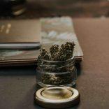 Reasons to Purchase Medical Marijuana at a Grafton Dispensary